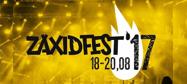 """Фестиваль """"Zaxidfest 2017"""""""